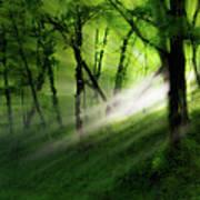 Hope Lights Eternal - A Tranquil Moments Landscape Poster by Dan Carmichael