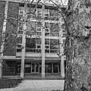 Hopkins Hall Black And White Poster