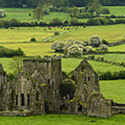 Hore Abbey Ireland Poster by Dick Wood