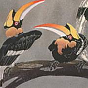 Hornbills Poster