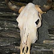 Horned Skull Poster