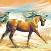 Horse Akalteke Poster
