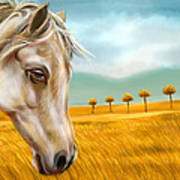 Horse At Yellow Paddy Field Poster