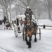 Horse Carriages In Snowy Park Poster