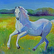 Horse Fancy Poster by Gwen Carroll