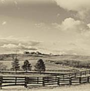 Horse Farm Sepia Poster