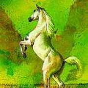 Horse Paintings 010 Poster