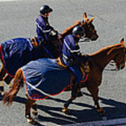 Horse Police Poster