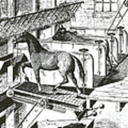 Horse Powered Stall Cleaner, 1880 Poster