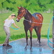 Horse   Wash Poster