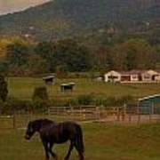 Horseback Riding In Gatlinburg Poster by Dan Sproul