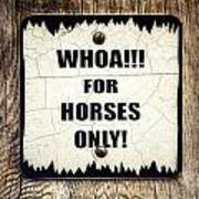Horses Only Sign Picture Poster
