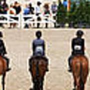Horseshow Pano Poster