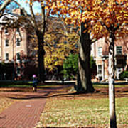Hot Pink Hoodie - Davidson College Poster