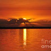 Hot Summer Sunrise  Poster