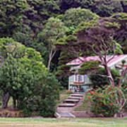 House And Garden Waitamgi Poster