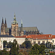 Hradcany - Cathedral Of St Vitus On The Prague Castle Poster