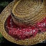Hula Hats 5 Poster
