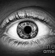 Human Eye Poster by Elena Elisseeva