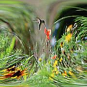 Humming Bird Digital Art Poster