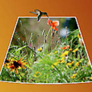 Humming Bird Out Of Bounds Poster