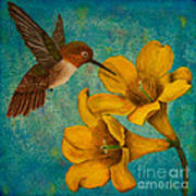 Hummingbird With Yellow Jasmine Poster