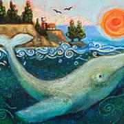 Humpback Whales In Santa Cruz Poster