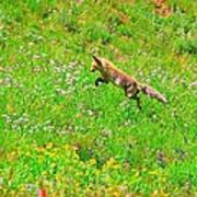 Hunting Fox Poster
