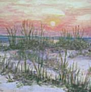 Hunting Island Sea Oats Poster
