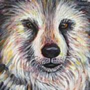 Husky Wolf Poster