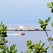 Hydra Island During Springtime Poster