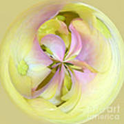 Hydrangea Kaleidoscope Poster
