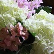 Hydrangeas Bouquet Poster