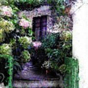 Hydrangeas In Rhodes Poster by Judy Paleologos
