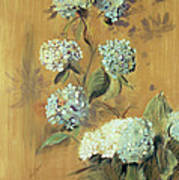 Hydrangeas Poster by Paul Cesar Helleu