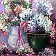 Hydrangeas Still Life Pink Poster