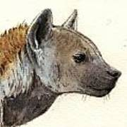 Hyena Head Study Poster by Juan  Bosco