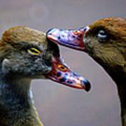 I Crown You Ducklet Poster by DerekTXFactor Creative