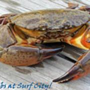 I Got Crabs At Surf City Poster