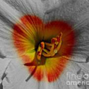 I Heart Flowers Poster