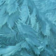 Ice Patterns Formed On Glass Poster