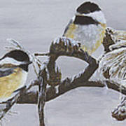 Ice Storm Chickadees Poster by Johanna Lerwick