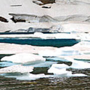 Icebergs In August Glacier International Peace Park Poster