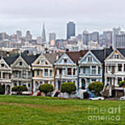 Iconic Painted Ladies Poster