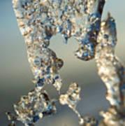 Icy Closeup Poster