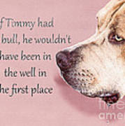 If Timmy Had A Pitbull Poster