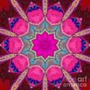 Illuminated Rose Poster