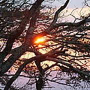 Illuminating Sunset Poster