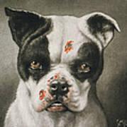 I'm A Bad Dog What Kind Of A Dog Are You Circa 1895 Poster by Aged Pixel