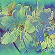 Impressionistic Blue Blossoms Poster
